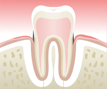 Dentiste Paris 1